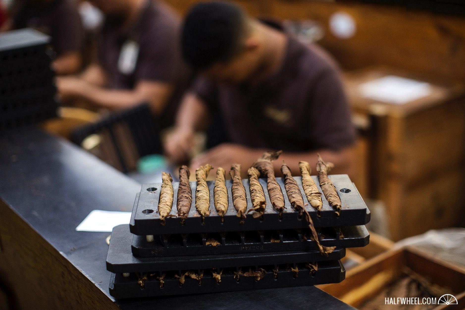 Cigars Davidoff molds